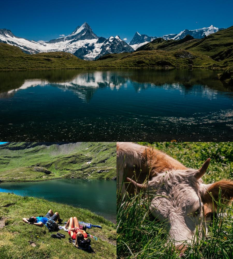szwajcaria-Grindelwald