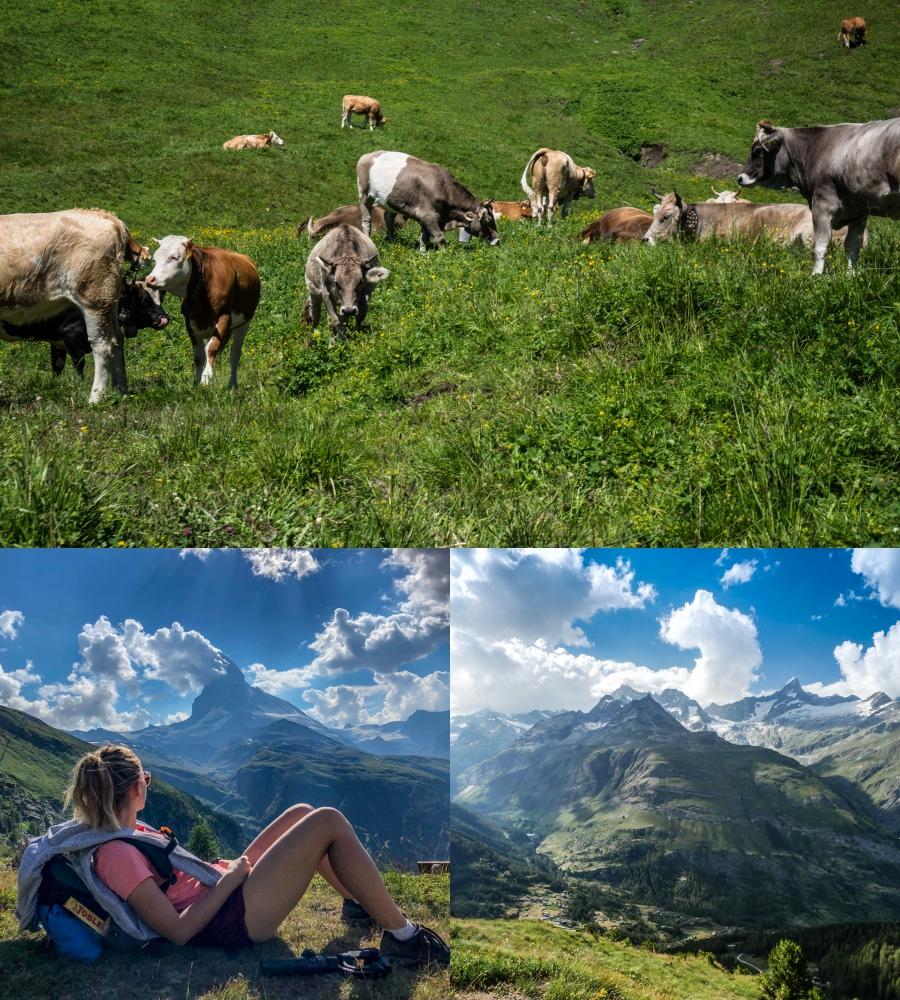 szwajcaria-widoki