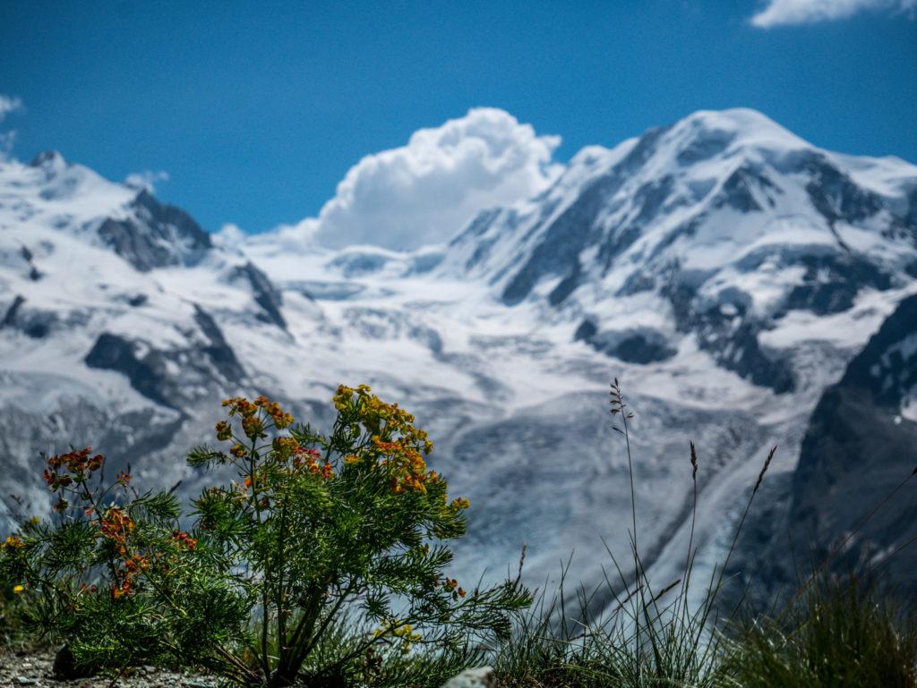 szwajcaria-lodowce