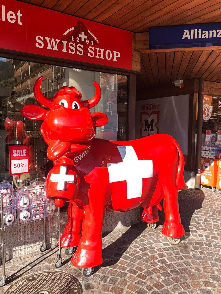 szwajcaria-krowa