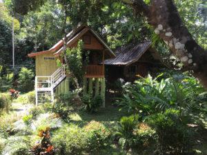 Resort Khao Sok
