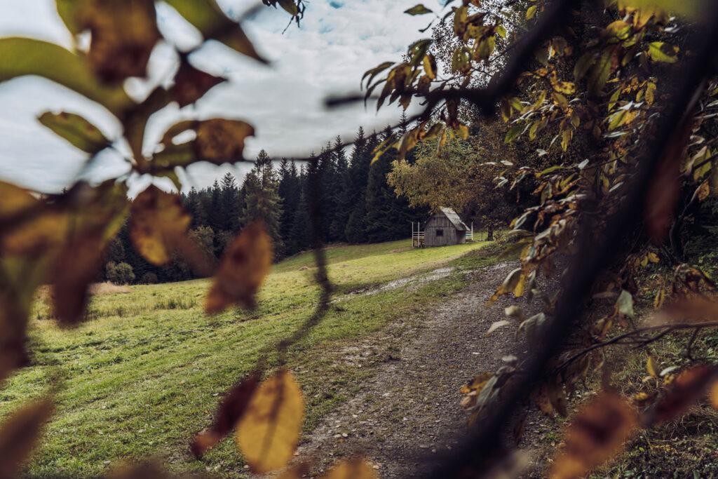 Beskid Wyspowy - szlak na Mogielice