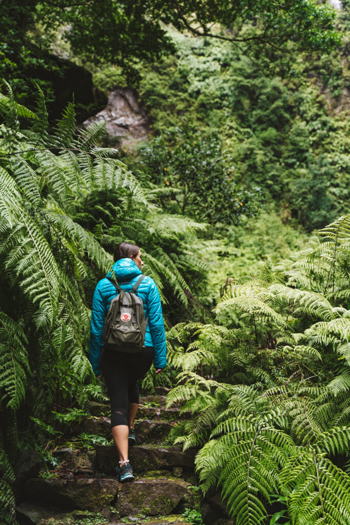 Madera - Niesamowita zieleń