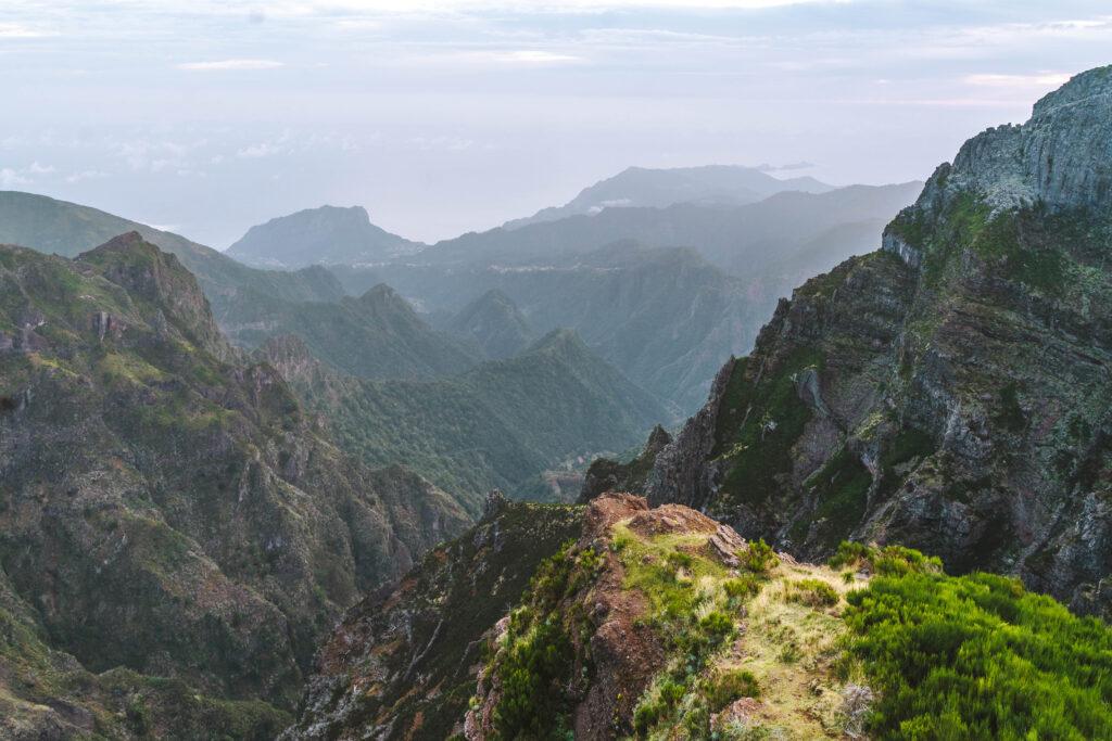 Madera Pico do Areiro