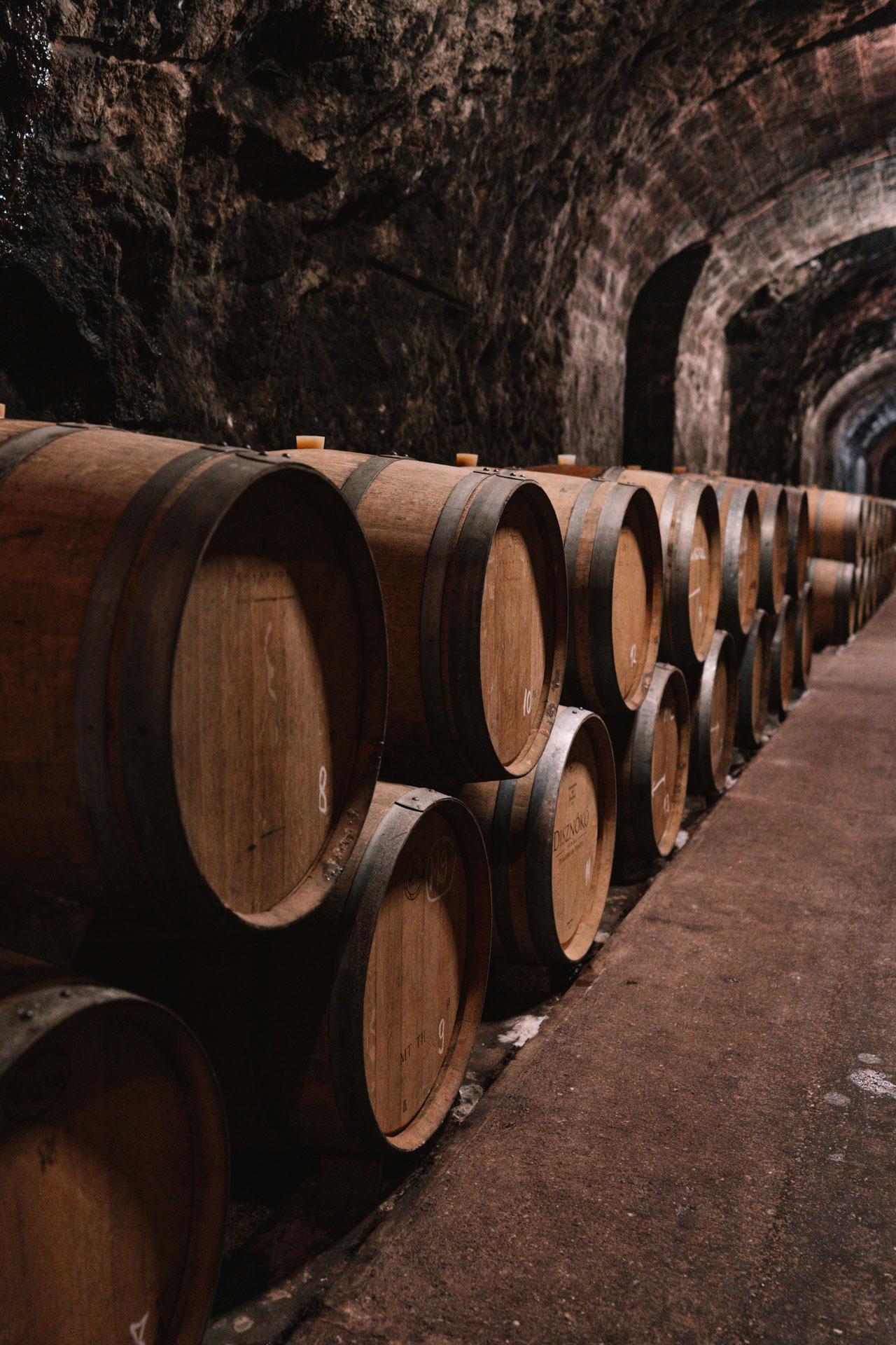węgierska winnica