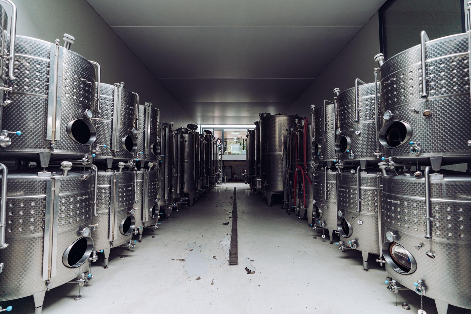 produkcja wina Tokaj
