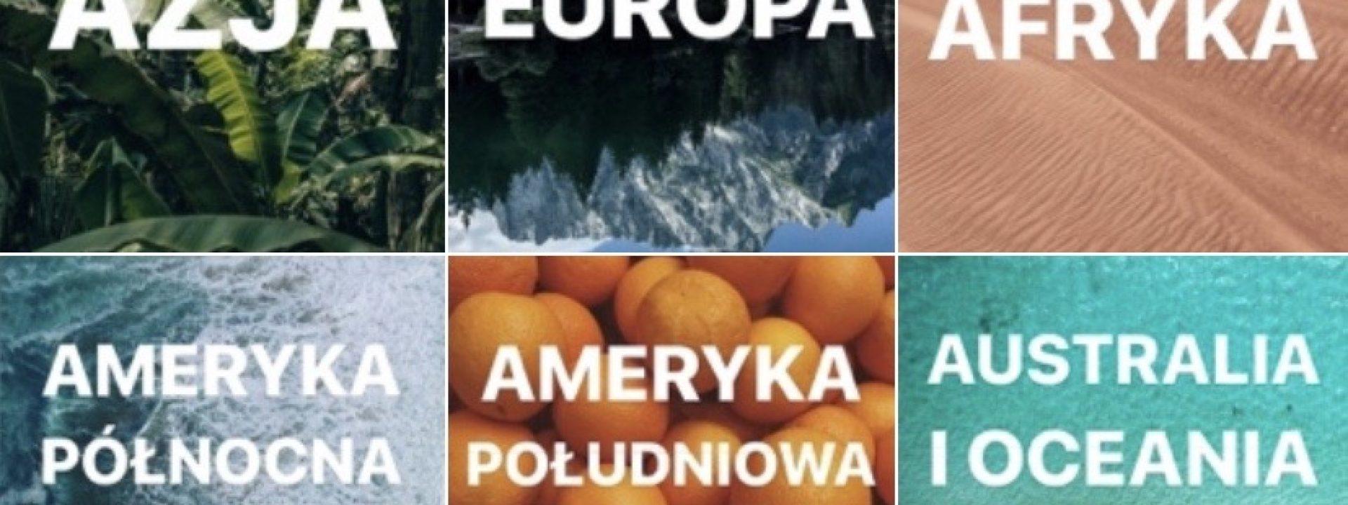 Polacy na emigracji
